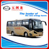 8m 35 Seats Diesel Passenger Coach Bus for Sale (WZL6820A4)