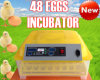 48 Eggs Automatic Small Cheap Chicken Incubator Educational Toys