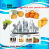 1t/H Pineapple Juice Production Line