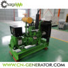 10kw-5MW Cogeneration Silent Methane Gas Biogas Generator for CHP Co-Generation