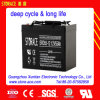 SGS Deep Cycle Rechargeable Battery 12V 50ah