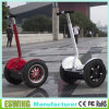 China New Power 2 Wheel Electric Scooter E-Scooter Segway Scooter