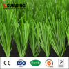 Around Swimming Pool Grass Football Soccer Pitch Artificial Lawn