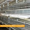 Tianrui design High Automatic H type poutlry broiler battery cage in Nigeria / Africa