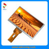7.0 Inch 800 (RGB) *480 TFT LCD Display for Automotive