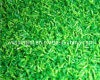 Goodproduct for Cricket Field with Artificial Grass (CPCS-T-10 (PA))