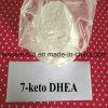 Bulking Cycle Steroids DHEA Acetate/7-Keto DHEA Acetate/7-Keto DHEA (566-19-8)