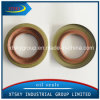 Xtsky NBR Tc Oil Seal (150*172*12mm