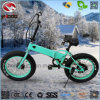 Alloy Frame 250W 20inch Kenda Fat Tire Electric Folding Bike