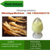 China Supply 80% Inhibition of Aging Plant Extracts Ginseng