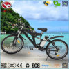 250W Bike Electric Mountain Bicycle with Conversion Kit