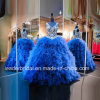 Blue Quinceanera Dresses Lace Embroidery Beaded Organza Ball Gowns Z3015