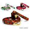 Diving Dog Collar Lead LED Reflective Dog Leashes