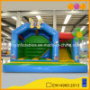 Hot Sale Beautiful Inflatable Bouncer Combo with Slide (AQ07168)