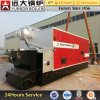 Double Drum Coal and Wood Fired Steam Boiler
