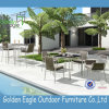 Tube Structure Powder Coat Patio Dining Set P-Fp0316