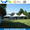 5X5m Garden Sun Canopy Tent for Private Party Banquet From China