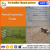 PVC Coated Metal Wire Chain Link Back Yard Livestock Fence