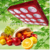 Wholesale 1200W Hydroponic Plant LED Grow Lights Full Spectrum for Us Europe Market