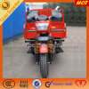 150cc 3-Wheel Bicycle with Gasoline Motor Engine