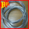 Chines Supply Gr1 Titanium Wire for Fishing Use