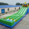 Giant Green Inflatable Slide (CYSL-585)