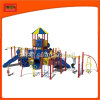 Children Outdoor Playground Equipment (2224A)