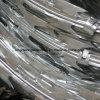Bto-12 Hot-Dipped Galvanized Concertina Razor Wire