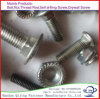 M10 Carriage Bolts DIN603 and 607 Flat Head Carriage Bolr Hot DIP Galvanized