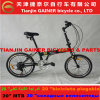 "Tianin Gainer 20"" Folding Bicycles 21sp Stable Quality"