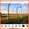 Top Quality Barbed Wire 12#X14# (XM-BW2)