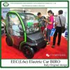 Smart Design Green Power Electric Car with Two Doors