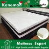 Waterproof Foam Mattress High Quality