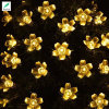 Warm White Color 9.5meter LED Solar Flower String Lights
