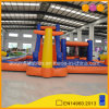 Giant Inflatable Water Slide Inflatable Water Park for Family Fun (AQ13230)