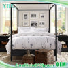 Professional Deluxe Cotton Apartment Quilt Sets
