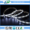 12V/24V warm white light 2800K 3528 6-10W Waterproof LED Flexible Strip with CE RoHS