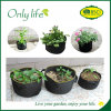 Onlylife Felt Economical Garden Planter Bag Mini Grow Bag