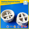 Distillation Column Packing Ceramic Cascade Mini Ring (CMR)