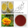 Factory Price Additive Marigold Extract Lutein and Zeaxanthin for Eyes