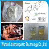 Oral Steroids Turinabol CAS 2446-23-3 for Male Muscle Building