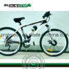 lithium Battery Electric Bikes