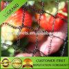 Factory Price Bird Net, Vineyard and Crop Bird Netting