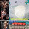 99.5% High Purity Bodybuilding Steroid Hormone Powder Dehydroisoandrosterones Dehydroepiandrosterones