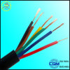 The Best Quality Price of Electric Cable Single Core 450/750V for Southafrica Market at Best Price