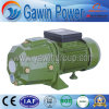 Jet-S Series Self-Priming Electric Water Pump with Competitive Price