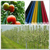 Fiberglass Nursery Stakes, Vine Stakes, Tree Stake