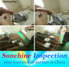 Inspection and Testing Services in China Mainland