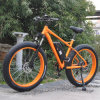 48V 500W Fat Tire Mountain E Bike
