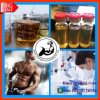 Ripex 225mg/Ml Injection Increase The Level of Muscle Mass More Powerful